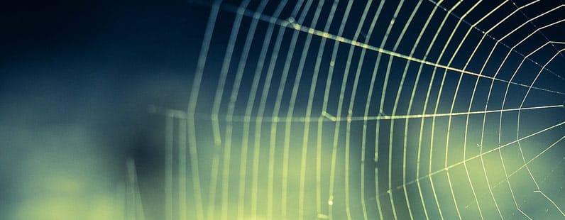 11 lições da aranha para escritores